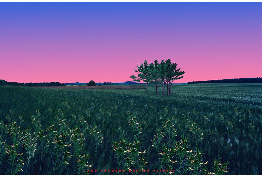 041_CDlugos-1993-AusFremdenGaerten9309002-150x100cm