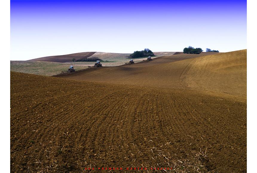 044_CDlugos-1994-AusFremdenGaerten9405007-75x100cm